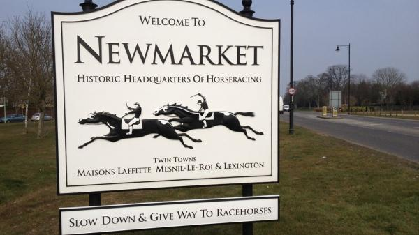 Newmarket Town Sign- C. Mil - Large